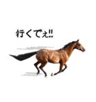 大阪弁をしゃべる馬のスタンプ(個別スタンプ:15)