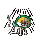 どろぼう猫のドラ猫さん(個別スタンプ:15)