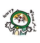 どろぼう猫のドラ猫さん(個別スタンプ:17)