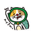 どろぼう猫のドラ猫さん(個別スタンプ:19)