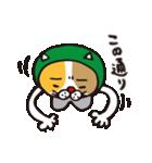 どろぼう猫のドラ猫さん(個別スタンプ:27)