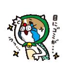 どろぼう猫のドラ猫さん(個別スタンプ:31)