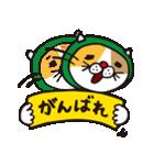 どろぼう猫のドラ猫さん(個別スタンプ:32)