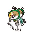 どろぼう猫のドラ猫さん(個別スタンプ:38)