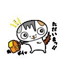猫の可愛い年賀状(個別スタンプ:40)
