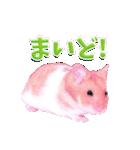 関西弁★幸せのピンクハムスター(個別スタンプ:02)