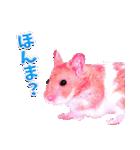 関西弁★幸せのピンクハムスター(個別スタンプ:06)