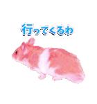 関西弁★幸せのピンクハムスター(個別スタンプ:21)