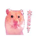 関西弁★幸せのピンクハムスター(個別スタンプ:26)