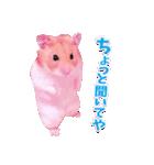 関西弁★幸せのピンクハムスター(個別スタンプ:29)
