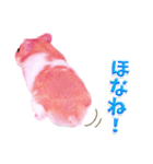 関西弁★幸せのピンクハムスター(個別スタンプ:34)