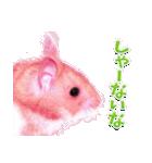 関西弁★幸せのピンクハムスター(個別スタンプ:35)