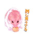 関西弁★幸せのピンクハムスター(個別スタンプ:39)