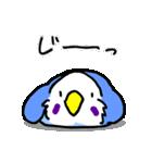 となりのいんこちゃん(個別スタンプ:03)