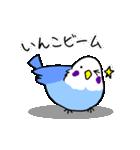 となりのいんこちゃん(個別スタンプ:08)