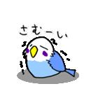 となりのいんこちゃん(個別スタンプ:12)