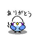 となりのいんこちゃん(個別スタンプ:13)