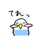 となりのいんこちゃん(個別スタンプ:15)