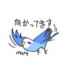 となりのいんこちゃん(個別スタンプ:19)