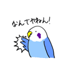 となりのいんこちゃん(個別スタンプ:28)