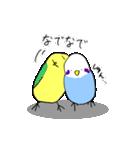 となりのいんこちゃん(個別スタンプ:35)