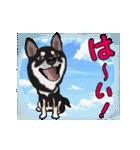 動く!黒柴っち(個別スタンプ:3)