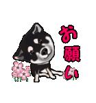動く!黒柴っち(個別スタンプ:09)