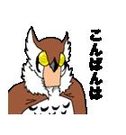ウォッチバード・ソサエティー/3rdウォッチ(個別スタンプ:36)