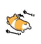 ぷりけつコーギー(個別スタンプ:05)