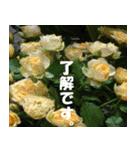 花のスタンプ(個別スタンプ:38)