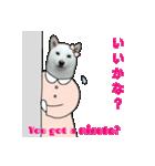 俺やで!ゆかいな白柴わんこ6(ガーリー編)(個別スタンプ:17)