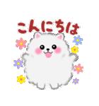 ポメラニアン ぽちゃん2 ☆ 敬語