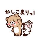 ぱんくま2 ゆるっと敬語でメッセージ(個別スタンプ:05)