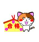 4匹の子猫 合格祈願・受験(個別スタンプ:01)
