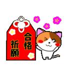 4匹の子猫 合格祈願・受験(個別スタンプ:05)
