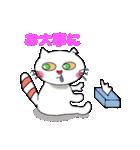 にゃんころ にゃおき(個別スタンプ:37)