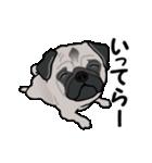 動く!パグっち(個別スタンプ:7)