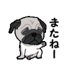 動く!パグっち(個別スタンプ:11)