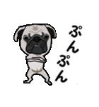 動く!パグっち(個別スタンプ:13)