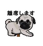 動く!パグっち(個別スタンプ:24)