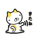 ひらめねこ(個別スタンプ:40)