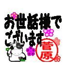 「菅原」専用スタンプ(個別スタンプ:22)