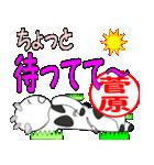「菅原」専用スタンプ(個別スタンプ:24)