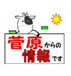 「菅原」専用スタンプ(個別スタンプ:37)