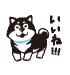 しばんばん(個別スタンプ:03)