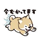 しばんばん(個別スタンプ:13)