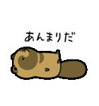 タヌキとキツネ3(個別スタンプ:17)