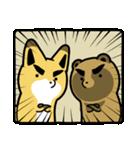 タヌキとキツネ3(個別スタンプ:29)