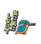鳥どり見どりのアップリケ(個別スタンプ:06)