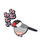 鳥どり見どりのアップリケ(個別スタンプ:15)